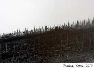 13_Wallengren_Untitled_42(detail2)_Oct10